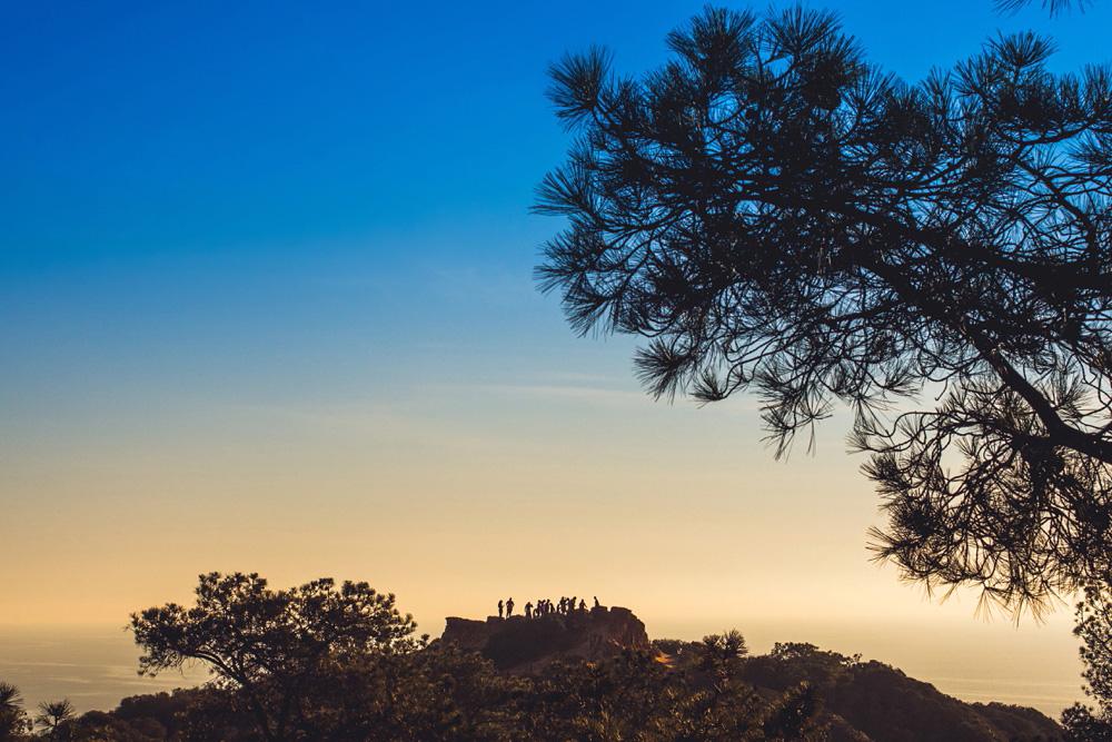torrey-pines-state-reserve-02